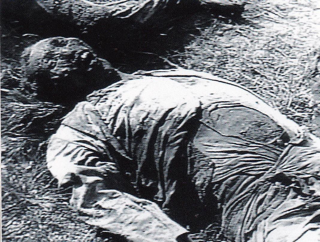 朝鮮戦争下の犠牲者