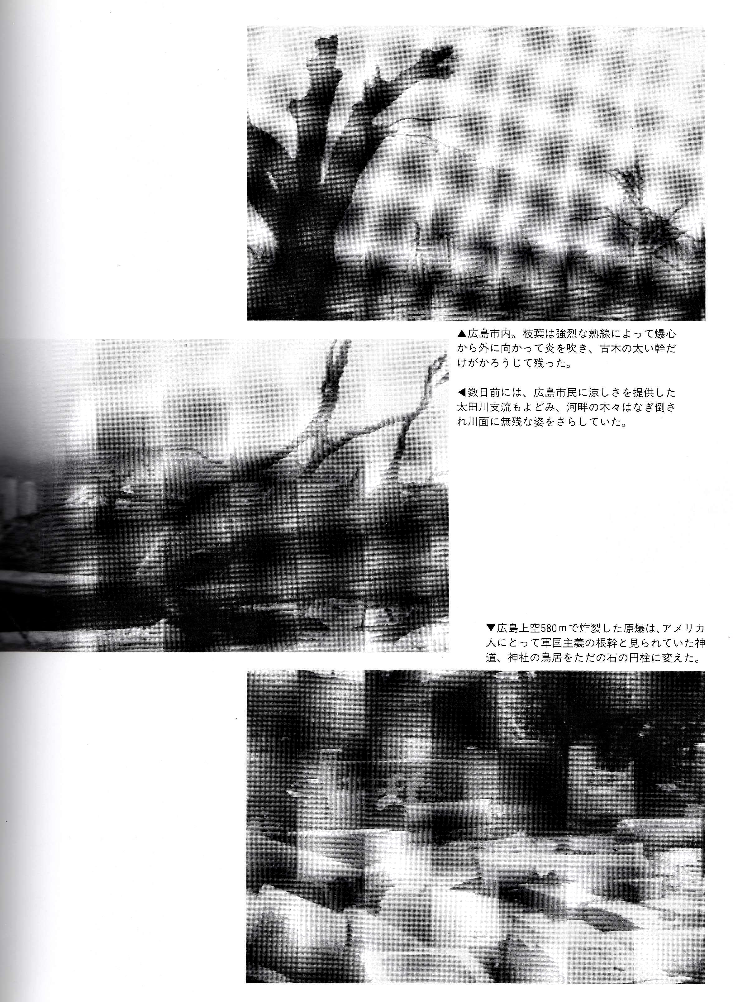 広島原爆の惨状_InPixio